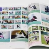 『飛行犬写真集発売中!!昨年11月3日開催分掲載されてます!』の画像