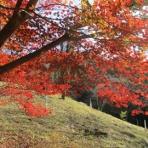 いつも居留守の在 氣呂(imasu_kero)のblog