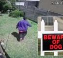 【動画】 ちっちゃい愛玩犬に追いかけられた泥棒、大慌てで逃げる