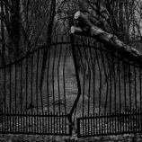『東北・山形県のオカルト体験「猿のきこり」「山奥の怪」』の画像