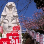 Nori-sukeの写真散歩