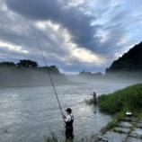 『小鮎と遊ぶ 53(2021/7/10 安曇川 大会は中止だけど…)』の画像