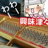 『グランドピアノがバラバラ!4歳児がピアノの構造を学ぶ』の画像