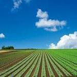 元サラリーマン(40)「農家への転職」を後悔www