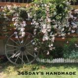 『◆ガーデニングのお花活用!開花期を過ぎても楽しめる方法◆』の画像