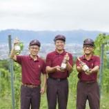 『【イベント】サントリー登美の丘ワイナリー「新酒まつり2018」開催』の画像