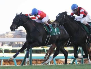 今年の中山金杯の勝ち馬トリオンフが電撃引退