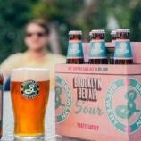 『キリンビール、爽やかな酸味のビール「ブルックリンベルエアサワー」瓶発売』の画像