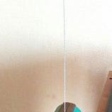 『【自作ワイヤー】ツイストワイヤーを作ろう』の画像