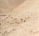 砂漠に隠れるイスラエル兵…高い迷彩技術で発見は非常に困難(写真あり)