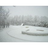 『YUKI 〜雪〜』の画像