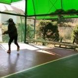 『tennis』の画像