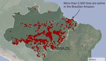 【解説】アマゾンの森林火災、どれくらいひどいのか 火災で大量のCO2と煙が発生 アマゾン盆地は地球温暖化の緩和に大事