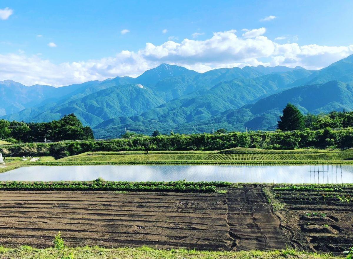 八ヶ岳工房 羽賀のblog イメージ画像