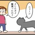 よく見ると怖いネコの視線