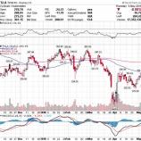 『【TSLA】資金難に陥るテスラ、不安な投資家とブチ切れるCEO』の画像