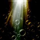 『光の方向へ』の画像