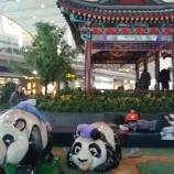 『【エアチャイナ】北京(PEK)~羽田(HND)CA167ビジネスクラス搭乗記 ---やっぱりエアチャイナのビジネスは良いんじゃないかなぁ!ーーー』の画像