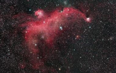 『銀河が昇る前にシリーズ!沈むカモメ星雲(IC2177)』の画像