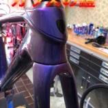 『ガラスの鎧 in ドマーネ』の画像