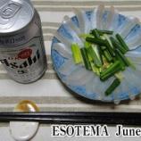 『日本海の白鱚で刺身を作ってみた!日本海のシロギス釣り #006』の画像