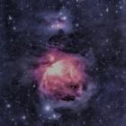『BORG107FLによるオリオン座の大星雲(横浜)2020/02/02』の画像