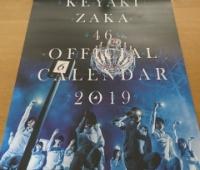 【欅坂46】欅ちゃんカレンダーもう届いた?