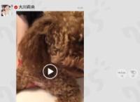 【朗報】755、アップデートで動画の投稿が可能に(15秒まで)
