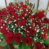 『60本の薔薇』の画像