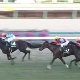 『【回顧】フェアリーS〈2018〉~一番スムーズな競馬をしたプリモシーン~/日経新春杯の注目馬 vol.923』の画像