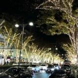 『表参道のイルミネーションは本日12月1日より開催! アルバイトも毎日あります』の画像