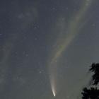 『投稿:7/19のネオワイズ彗星~那須 2020/07/20』の画像