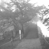 『竹田城跡へレッツラ555=333』の画像