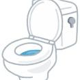 【みんなの意見】上司に「トイレ詰まり直してたんで遅刻します」って言った結果w