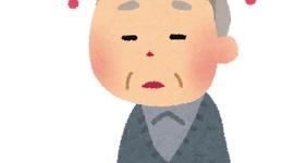【コラム】琉球新報「菅内閣は『ぱおん内閣』だ」