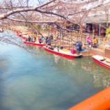 『水の都 柳川 「川下り」体験』の画像