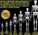スミソニアン博物館、巨人族の存在の証拠公開へ
