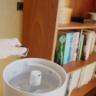 【日々の加湿を快適に】キャップ1杯でOK、加湿しながら空間も加湿器もきれいにする『見た目もいい』アイテム