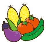 『夏野菜のご恩』の画像