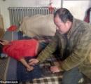 【中国】病気の娘を病院に連れて行く金が無い親父、コブラに娘を噛ませて治療を行う