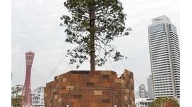 【祟り】「嫌なら見るな」で炎上のクリスマスツリー、願い事を書いた飾りが次々と落下…自然分解されないプラスチック製で海洋汚染が問題に