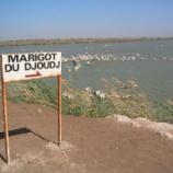 『行った気になる世界遺産 ジュッジ鳥類国立公園』の画像