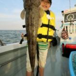 『6月23、24日 釣果 ジギング、ヒラマサキャスト、ロック、フラット』の画像