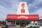 『ペットショップ 犬の家』っていうお店がNEWオープンしてる!~ブックマーケットがあった私部西線、梅が枝のところ~