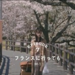 乃木坂、櫻坂、日向坂。そして、欅坂・けやき坂とともに。