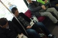 電車内で毛深すぎる乗客が盗影されるwwwwwwwwww