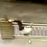 【動画】中国、ガードレールを飛び越え道路を横断しようとした女に天罰、悲劇が襲う! [海外]