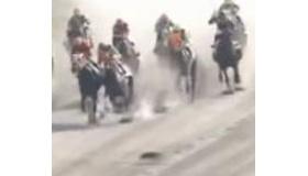 【ハプニング】   日本の競馬レース中に、猫が馬の前を横切る動画。  海外の反応