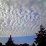 『うろこ雲』の画像
