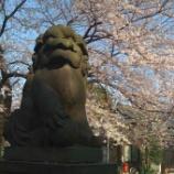 『江戸時代から続く上戸田氷川神社』の画像